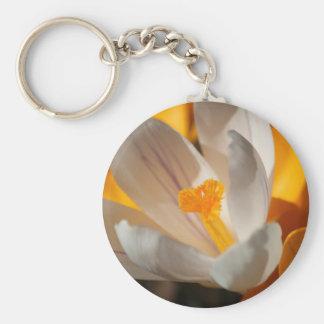 crocus basic round button keychain