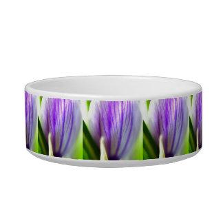 Crocus Petals Bowl