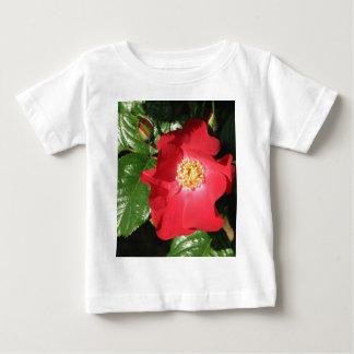 Crocus Shrub Rose 223 Baby T-Shirt