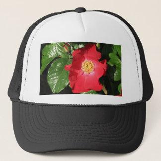 Crocus Shrub Rose 223 Trucker Hat