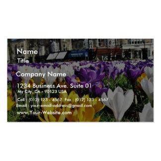 Crocuses Business Card
