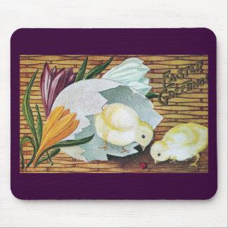 Crocuses, Chicks and Ladybug Vintage Easter Mousepads