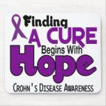 Crohn's Disease HOPE 5 Mouse Pad