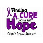 Crohn's Disease HOPE 5 Postcard