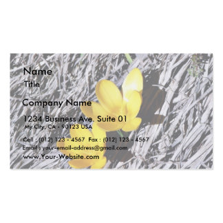 Crokus Vern Double-Sided Standard Business Cards (Pack Of 100)