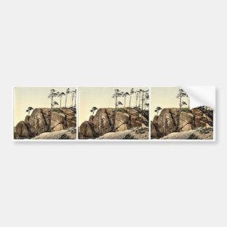 Cromford, the Black Rocks, Derbyshire, England cla Bumper Sticker