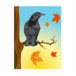 Cromwell Crow Photo Cutout