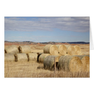 Crook County, Hay Bales 2 Greeting Cards