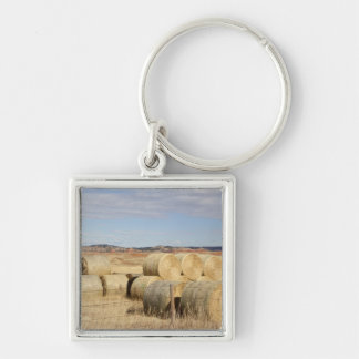 Crook County, Hay Bales 2 Silver-Colored Square Keychain