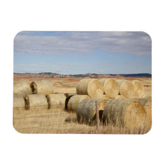 Crook County, Hay Bales 2 Magnet