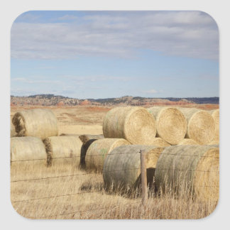 Crook County, Hay Bales 2 Square Sticker