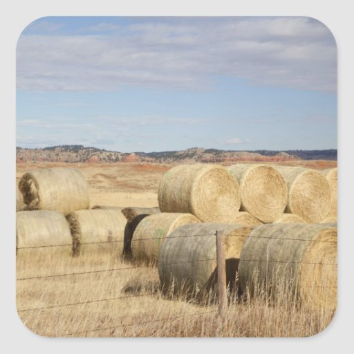 Crook County, Hay Bales 2 Stickers