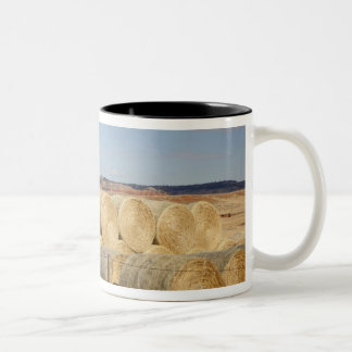 Crook County, Hay Bales 2 Two-Tone Coffee Mug