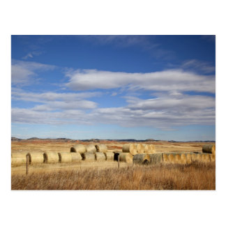 Crook County, Hay Bales Postcard