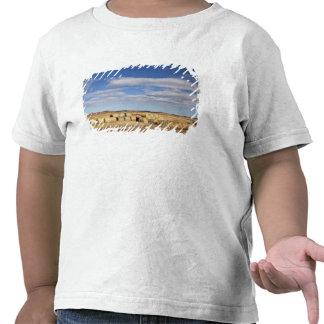 Crook County, Hay Bales T Shirt