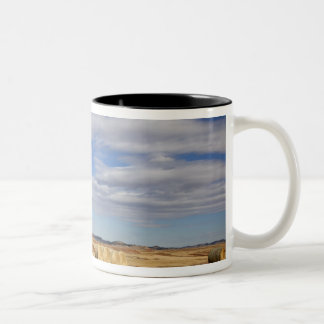 Crook County, Hay Bales Two-Tone Coffee Mug