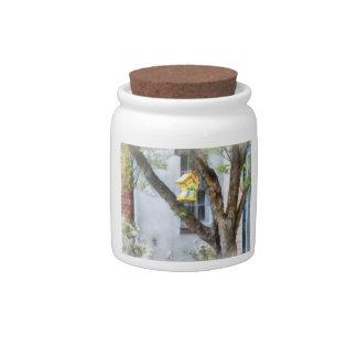 Crooked Bird House Candy Jar