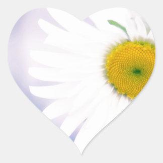 Crooked Daisy Heart Sticker