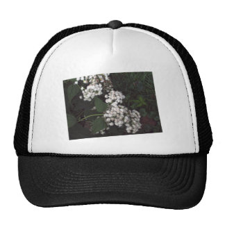 Crooked Flowers Hat