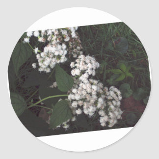 Crooked Flowers Classic Round Sticker