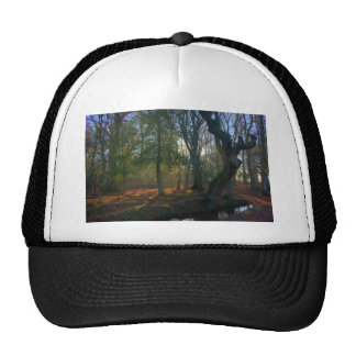 Crooked Tree and River Trucker Hats