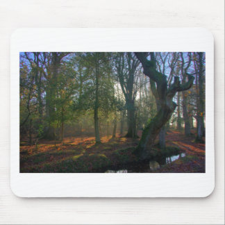 Crooked Tree and River Mouse Pad