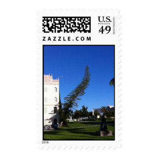 Crooked Tree Stamps