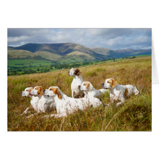Crookrise Pointers on the Fell Card