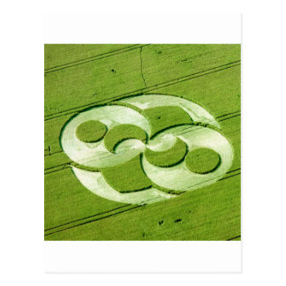 Crop Circle Julia Set Liddington Castle 1996 Postcard