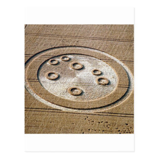 Crop Circle Sisters Of Pleiades Froxfield 1994 Postcard