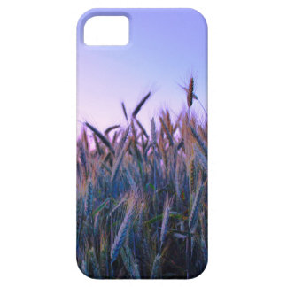 Crop Field Sunset Barely There Iphone 6 case