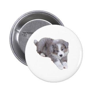 croppedimageofpup buttons
