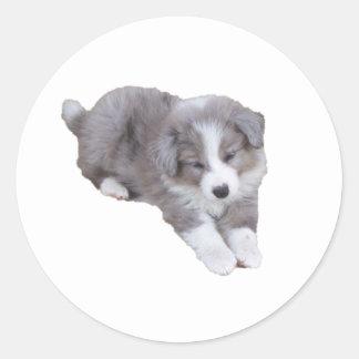 croppedimageofpup round sticker