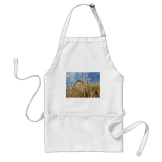 Crops of Cereals and Summer Sky Adult Apron