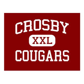 Crosby - Cougars - High School - Crosby Texas Postcard