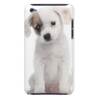 Cross breed puppy (2 months old) barely there iPod case