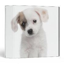 Cross breed puppy (2 months old) binder