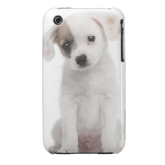 Cross breed puppy (2 months old) Case-Mate iPhone 3 cases