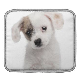 Cross breed puppy (2 months old) iPad sleeve