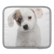 Cross breed puppy (2 months old) sleeve for iPads