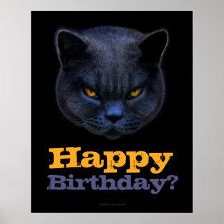 Cross Cat says Happy Birthday? Poster
