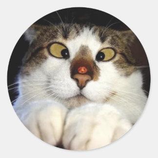 Cross Eyed Cat And Ladybird Classic Round Sticker