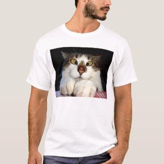 Cross Eyed Cat And Ladybird T-Shirt
