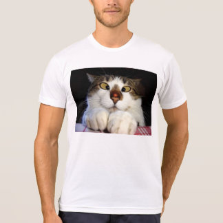 Cross Eyed Cat And Ladybird T-shirts