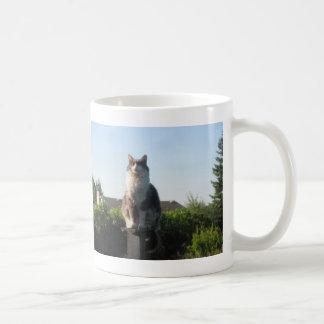 Cross eyed cat and Luke 1: 78-79 Coffee Mug