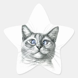 Cross Eyed cat G122 Pegatina En Forma De Estrella