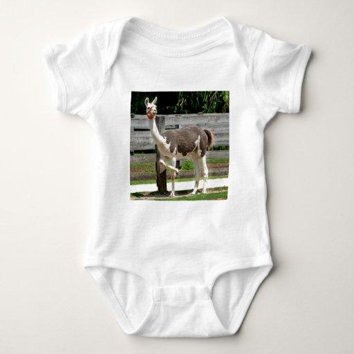 Cross-Legged Llama Infant's Clothing Baby Bodysuit