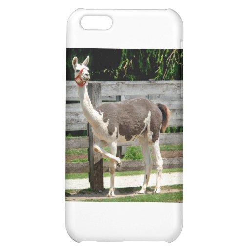 Cross-Legged Llama iPhone Case iPhone 5C Cover