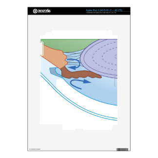 Cross section biomedical illustration of fluid decal for iPad 3