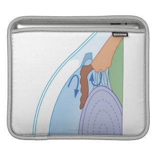 Cross section biomedical illustration of fluid iPad sleeves
